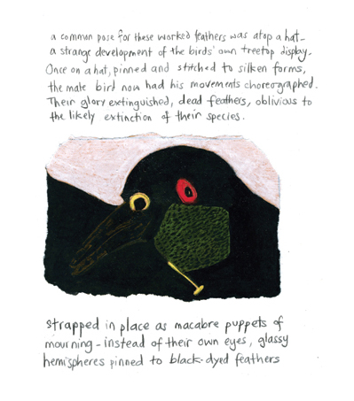 stuffed bird atached